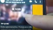 Governo de SP alerta para golpe com perfil falso por WhatsApp