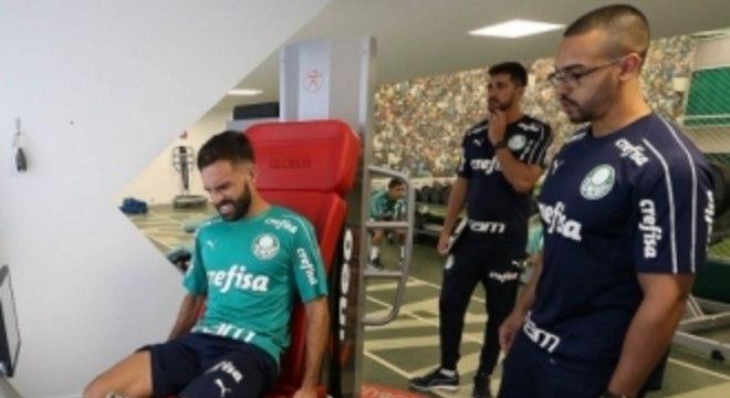 Allione - Palmeiras
