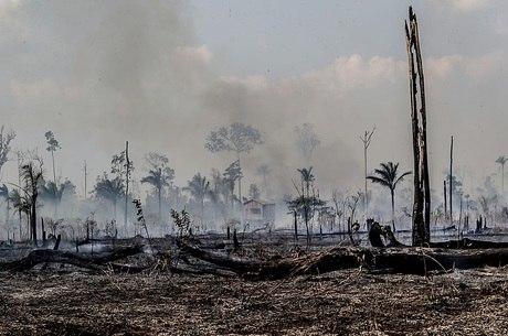 Queimada em Santo Antônio do Matupi, no Amazonas