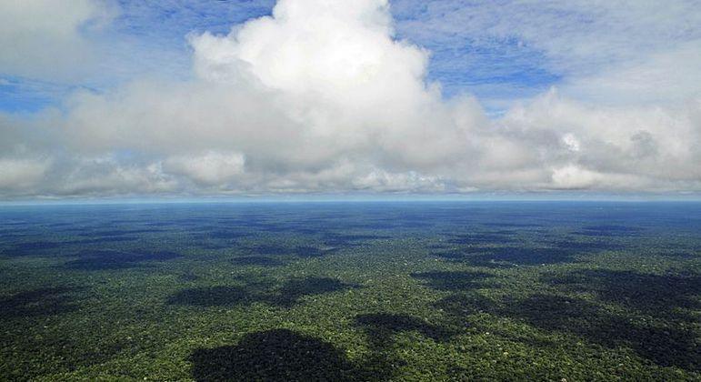 Ecossistema tem 3,7 milhões de quilômetros quadrados