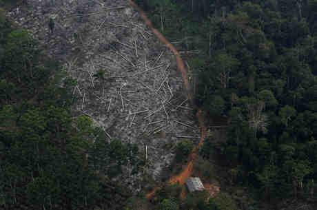 Fundo Amazônia perdeu financiamento da Noruega