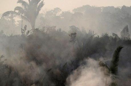 Ministro finlandês condenou a destruição da Amazônia
