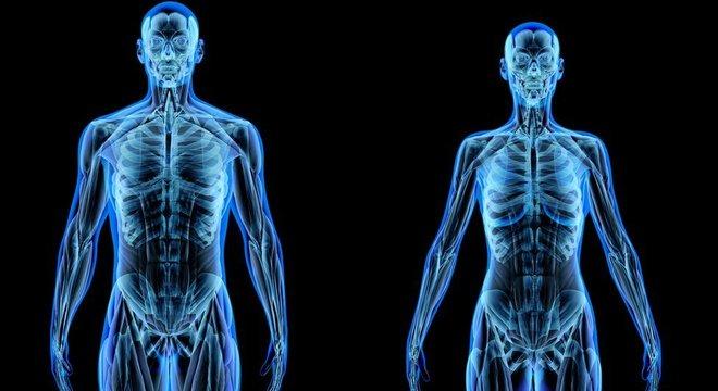 Nosso corpo é formado de átomos