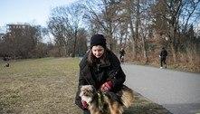 Alemães adotam quase 1 milhão de pets durante a pandemia