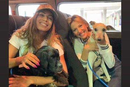 Cantora posou com cães ao lado de Luisa Mell
