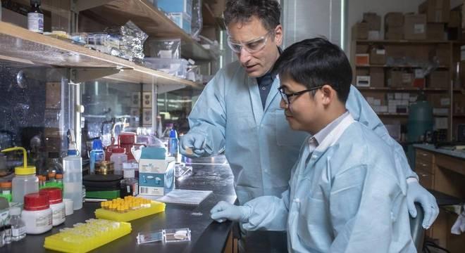 Mark Prausnitz e o pós-doutor Wei Li, do centro Gatech, examinam adesivo