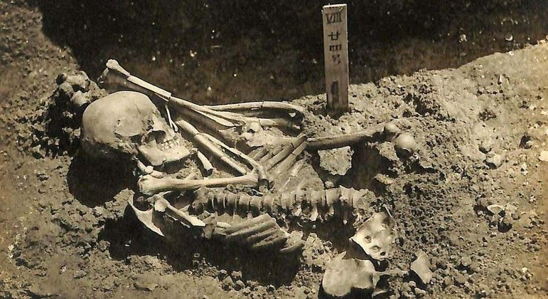 Esse esqueleto tem mais de 790 marcas de um feroz ataque de tubarão