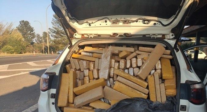 No interior do veículo foram encontrados 1.270 tabletes de maconha