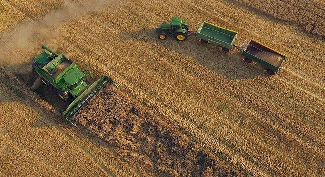 Efeito homogenizador: a forma como os homens usam a terra está beneficiando as mesmas plantas e animais