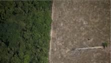 Bolsonaro sanciona lei que prevê nova política de serviços ambientais
