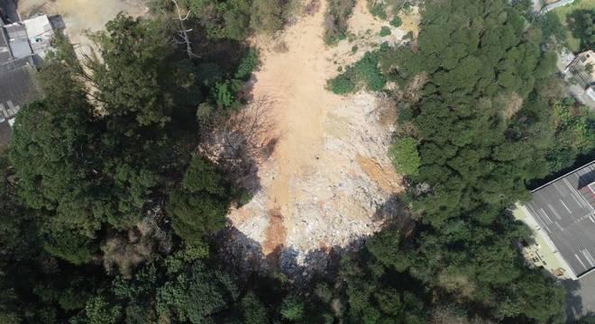 Levantamento indicou que há 160 áreas desmatadas na capital paulista