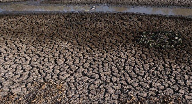 Seca histórica neste ano trouxe diversos prejuízos ao bioma