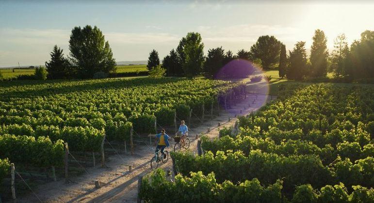 Mendoza é o destino ideal para quem gosta de se aventurar e também para os que buscam descanso, comida boa e vinhos mundialmente conhecidos