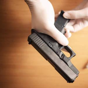 PF liberou 419 armas por dia