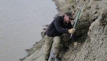 Fósseis mostram que dinossauros viviam no Ártico o ano inteiro