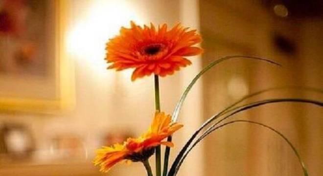 Arranjo delicado formado com flores de gérbera