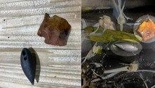 Artefatos de pedra milenares são achados em estômago de jacaré