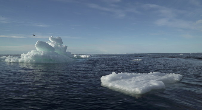 Ártico se aquece três vezes mais rápido que o  planeta desde 1971