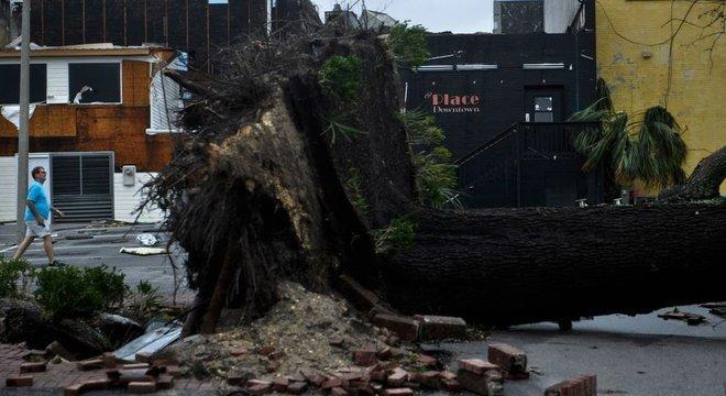 Residências ficaram sem luz depois que linhas de transmissão de energia foram destruídas pela queda de árvores