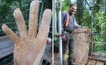 Uma árvore danificada por uma tempestade no País de Gales foi esculpida por um talentoso artista e passou a valer milhares de reais*Estagiária doR7, sob supervisão de Filipe Siqueira