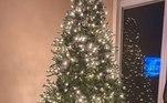 Filhotes Lincoln e Bentley, de Highland, Michigan, posaram para fotos em frente à árvore lindamente iluminada de seu dono, mas o doce par não pareceu nada impressionado com os resultados
