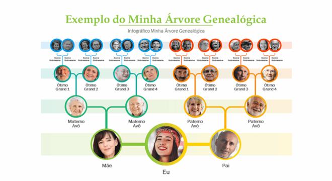 Árvore genealógica: o que é, para que serve e área de estudo