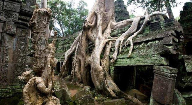 Árvores e raízes ocuparam o templo Ta Prohm no Camboja