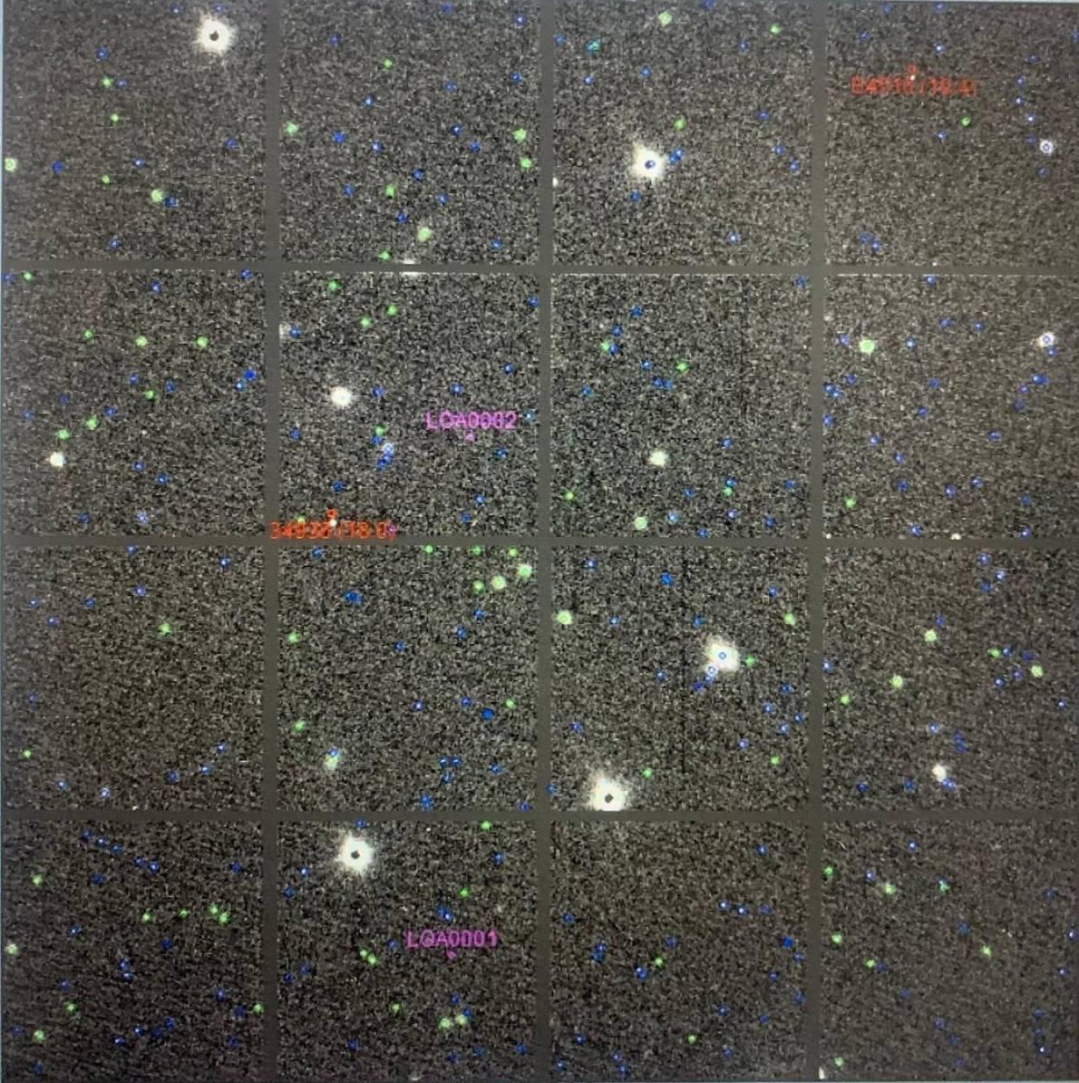 Os quatro asteroides descobertos por Lorrane