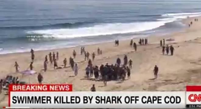 Homem foi retirado do mar, mas não resistiu aos ferimentos e morreu