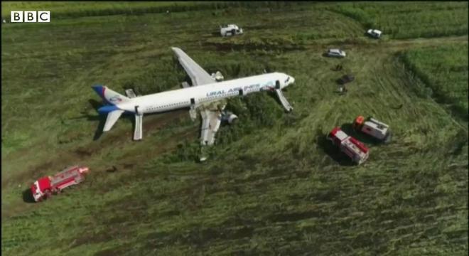 Avião se chocou com gaivotas minutos após a decolagem