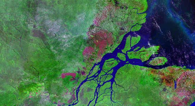 Bacias hidrográficas: o que são? Onde estão as principais regiões hidrográficas do Brasil?