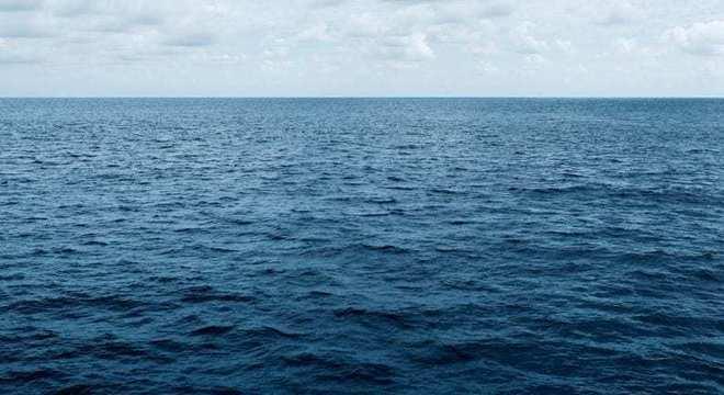 Baleia-Azul - principais características do maior animal do planeta