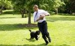 O ex-presidente descreveu o cachorro como muito paciente e bem-comportado, tendo se adaptado bem a