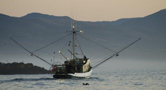 O aquecimento do oceano provoca desequilíbrio na cadeia alimentar marítima e prejudica a pesca