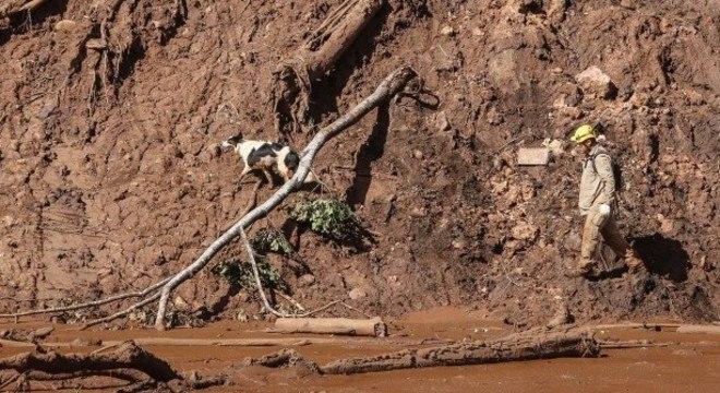 Bombeiros continuam as buscas na área atingida pela lama