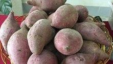 Feira livre: preço da batata-doce, laranja e banana está em queda