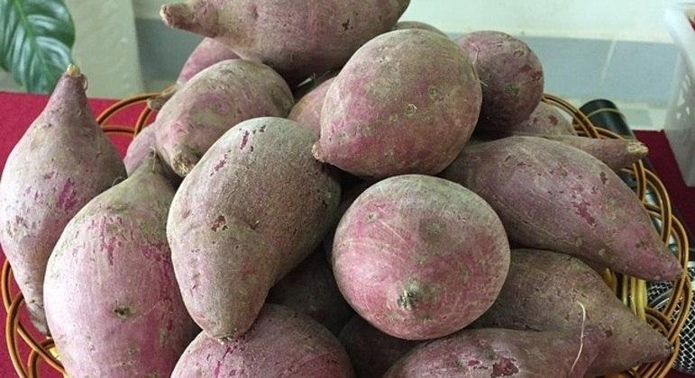 Kilo da batata doce rosada varia de R$ 1,61 a R$ 2,74 no atacado, segundo Ceagesp