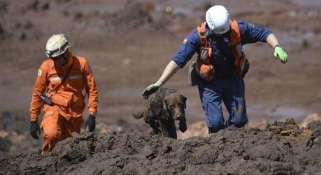 Outro aspecto questionado após desastre de Mariana é o fato de que as próprias empresas mineradoras contratarem fiscais para fazerem as inspeções anuais de segurança nas barragens