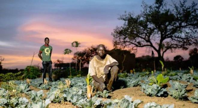 Investimentos - como compra de uma bomba d'água para irrigação - podem fornecer uma renda agrícola sustentável para agricultores como Sanfo Karim, em Burkina Faso