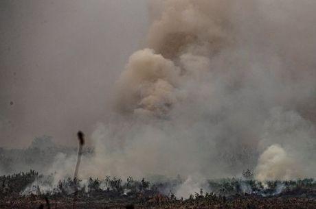 Fumaça e partículas liberadas pelos incêndios são levadas pelo vento a outras regiões