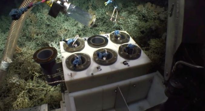 Equipamento de robótica subaquática permitiu a exploração em profundidades que esmagariam mergulhadores humanos