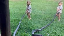 Bebê australiano puxa cobra de 2 metros para fora do jardim