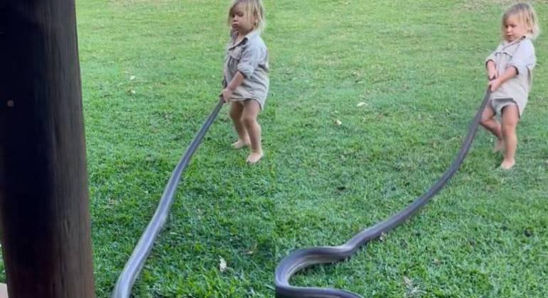 Banjo, filho do explorador australiano Matt Wright, puxa cobra de 2 metros para fora do jardim