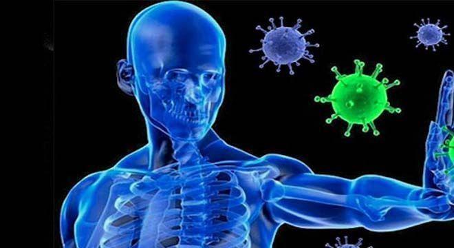 Benefícios do mel - efeitos positivos do consumo para o corpo humano