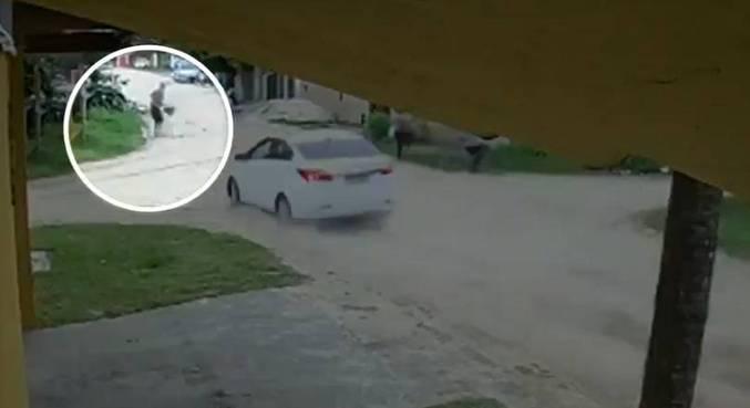Caso ocorreu em Bertioga, no litoral de São Paulo