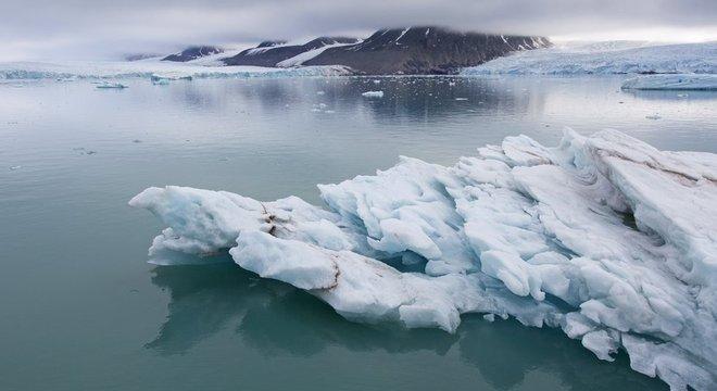 O Ártico é considerado um dos últimos ambientes primitivos da Terra