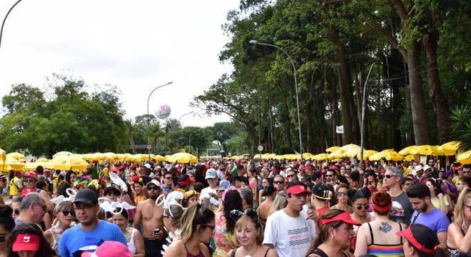 Passagem de 125 blocos em São Paulo gerou mais de 80 toneladas de lixo