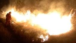Bolsonaro volta a dizer que ONGs podem estar por trás de queimadas na Amazônia (Divulgação Departamento de Santa Cruz / 19.8.2019)