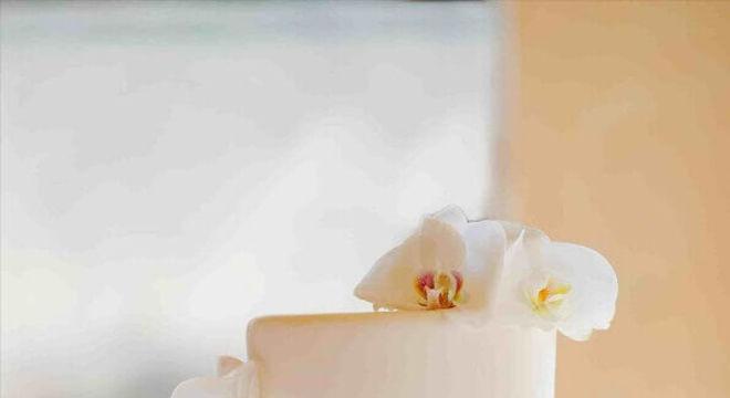 bolo de casamento branco 2 andares decorado com flores