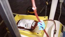 SP envia para o AM 250 bolsas de plasma para pacientes com covid
